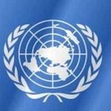 В ООН отмечается День русского языка