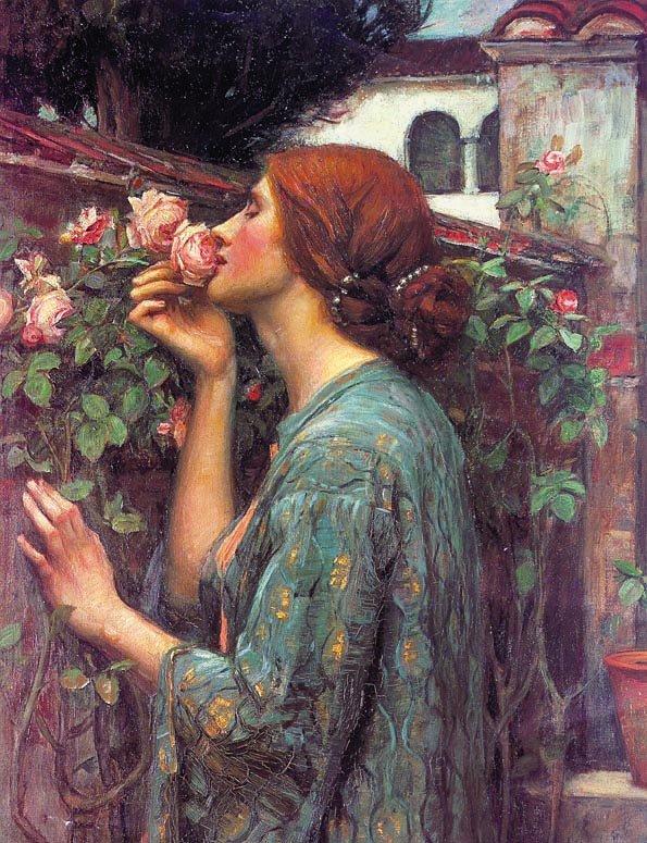 Мои любимые розы. 1903
