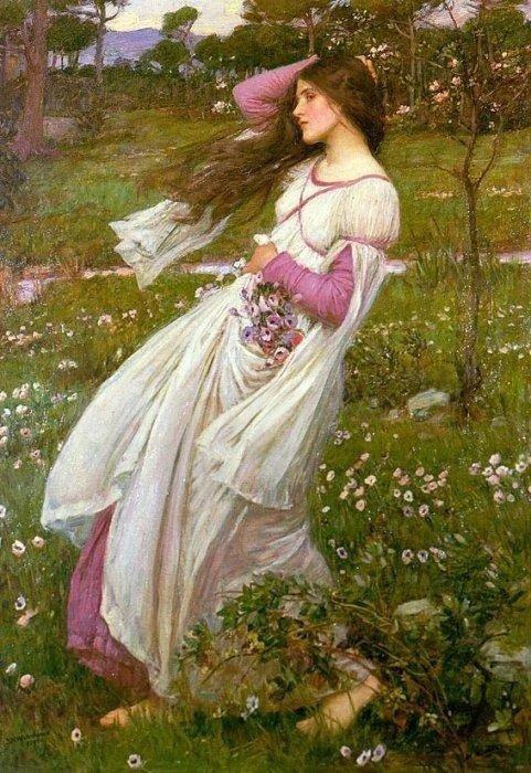 Полевые цветы. 1903