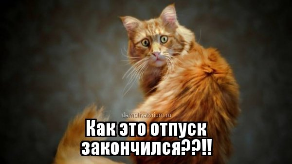 http://bookmix.ru/notes/img/notes_1403455702.jpg