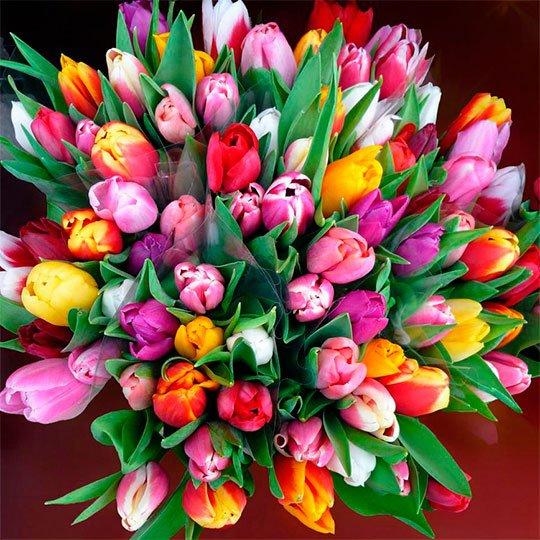 Картинки самый красивый букет цветов