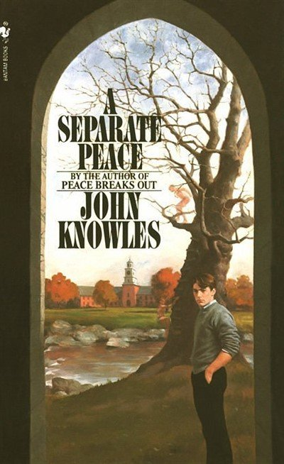 the love hate relationship of gene and finny in the novel a separate peace by john knowles Tags creator chose not to use archive warnings gene forrester/phineas finny gene forrester phineas finny (a separate peace) summary when gene really needs to let off steam but finny refuses to leave the room.